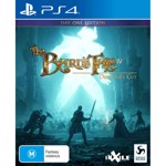 The Bard's Tale IV: Director's Cut - Packshot 1