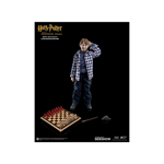 Harry Potter - Ron Weasley in Casual Attire 1/6 Scale Figure - Packshot 6