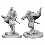Dungeons & Dragons - Nolzur's Marvelous Miniatures - Vampires - Packshot 1
