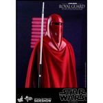 Star Wars - Royal Guard Hot Toys 1/6 Scale Figure - Packshot 3