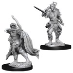 Dungeons & Dragons - Nolzur's Marvelous Miniatures - Male Elf Rogue - Packshot 1
