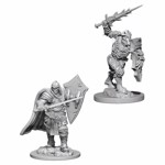 Dungeons & Dragons - Nolzur's Marvelous Miniatures - Death Knight & Helmed Horror - Packshot 1