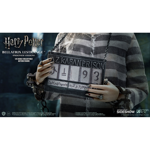 Harry Potter - Bellatrix Lestrange Prisoner Figure - Packshot 4