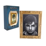 Harry Potter - Harry Holopane Frame Mood Lamp - Packshot 2