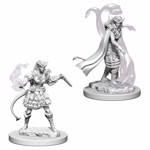 Dungeons & Dragons - Nolzur's Marvelous Miniatures - Tiefling Female Sorcerer - Packshot 1