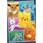 Pokemon - First Generation Favourites Poster - Packshot 1