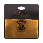 Harry Potter - Hogwarts Letter Lapel Pin - Packshot 1