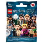 Harry Potter - LEGO Minifigures (Single Blind Bag) - Packshot 1