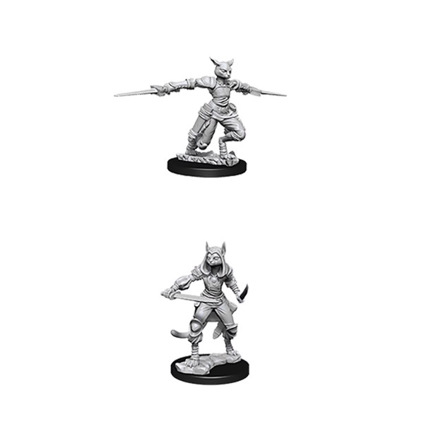 Dungeons & Dragons - Nolzur's Marvelous Miniatures - Tabaxi Female Rogue - Packshot 1