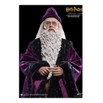 Harry Potter - Albus Dumbledore 1/6 Scale Star Ace Toys Figure - Packshot 2