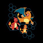 Pokemon - Charizard Evolutions T-Shirts - Packshot 2