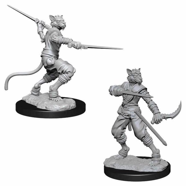 Dungeons & Dragons - Nolzur's Marvelous Miniatures - Male Tabaxi Rogue - Packshot 1