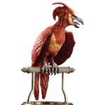 Harry Potter - Fawkes the Phoenix Statue - Packshot 1
