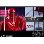 Star Wars - Royal Guard Hot Toys 1/6 Scale Figure - Packshot 6