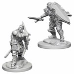 Dungeons & Dragons - Nolzur's Marvelous Miniatures - Human Male Paladin - Packshot 1