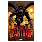 Marvel - Black Panther - Who is Black Panther Graphic Novel - Packshot 1
