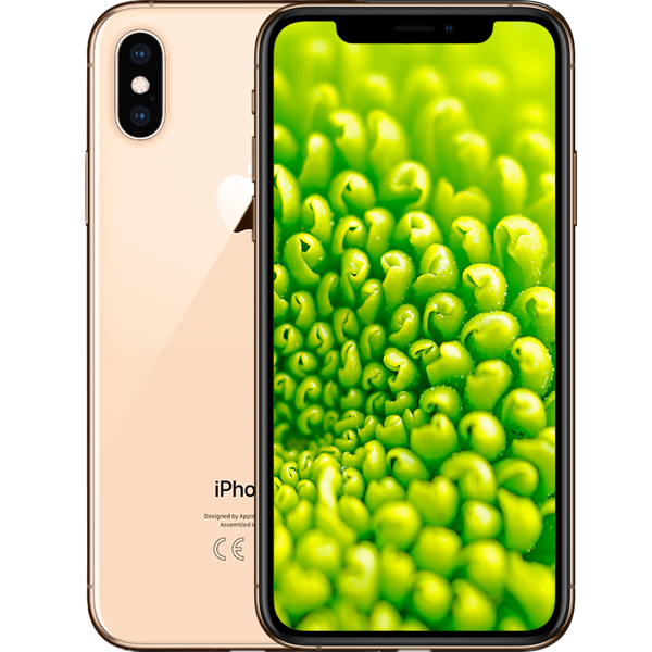 iPhone XS 64GB Gold (Refurbished by EB Games) - Packshot 1