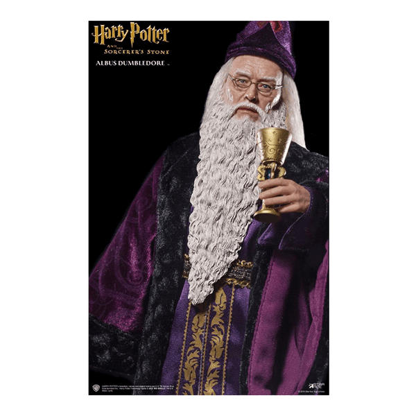 Harry Potter - Albus Dumbledore 1/6 Scale Star Ace Toys Figure - Packshot 3