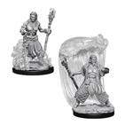 Dungeons & Dragons - Nolzur's Marvelous Miniatures - Water Genasi Male Druid - Packshot 1