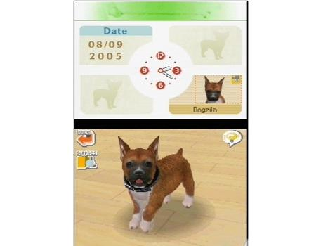 Nintendogs: Labrador and Friends - Screenshot 1