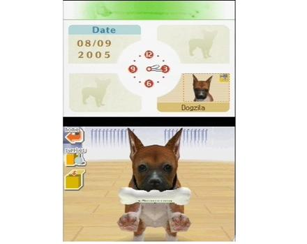 Nintendogs: Labrador and Friends - Screenshot 2