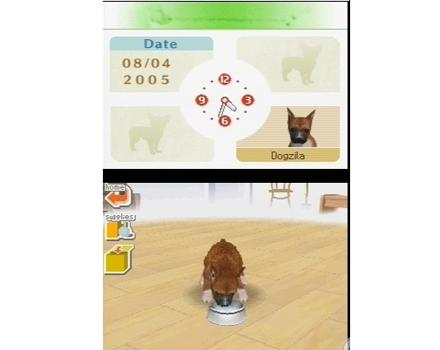 Nintendogs: Labrador and Friends - Screenshot 6