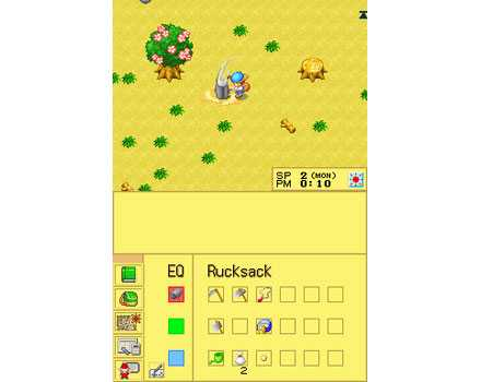 Harvest Moon DS - Screenshot 1