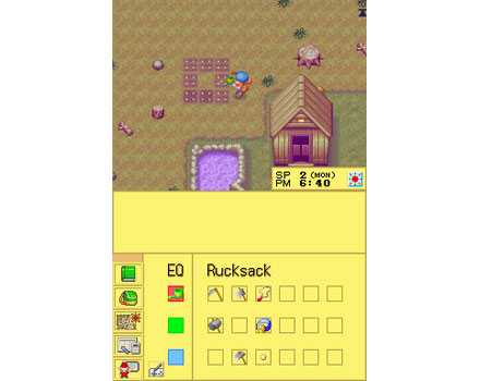 Harvest Moon DS - Screenshot 8