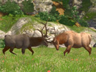 Cabela's Big Game Hunter - Screenshot 1