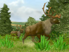 Cabela's Big Game Hunter - Screenshot 6