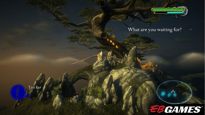 Legend of the Guardians: The Owls of Ga'Hoole - Screenshot 1