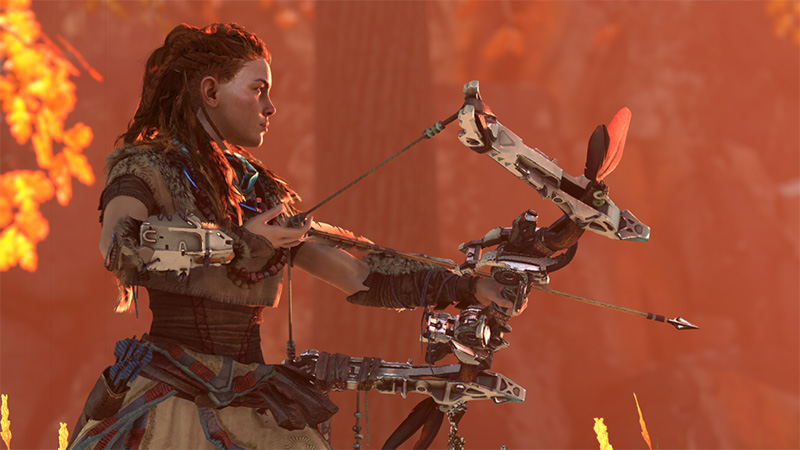 Horizon: Zero Dawn Limited Edition - Screenshot 3