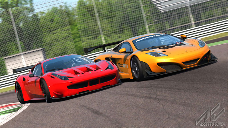 Assetto Corsa: Ultimate Edition - Screenshot 15