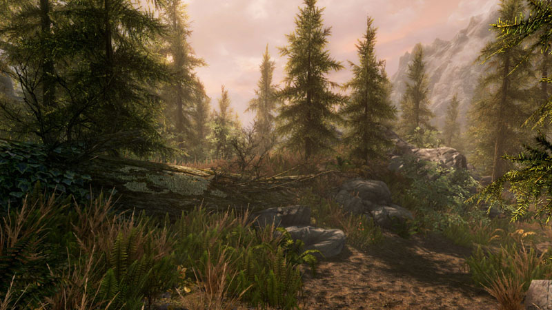The Elder Scrolls V: Skyrim - Special Edition - Screenshot 6