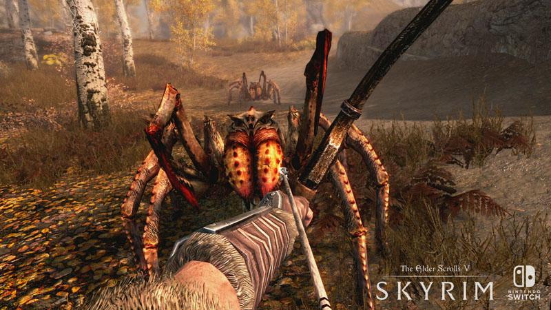 Elder Scrolls V: Skyrim (preowned)