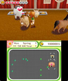 Harvest Moon: Skytree Village - Screenshot 2