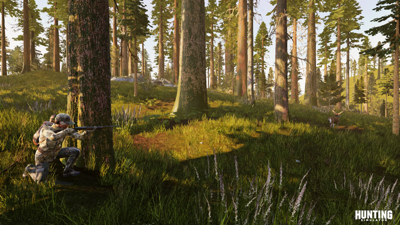Hunting Simulator - Screenshot 2