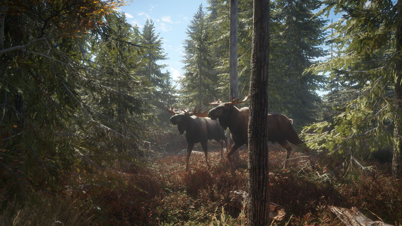 theHunter: Call of the Wild - Screenshot 4
