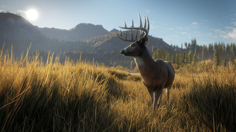 theHunter: Call of the Wild - Screenshot 6