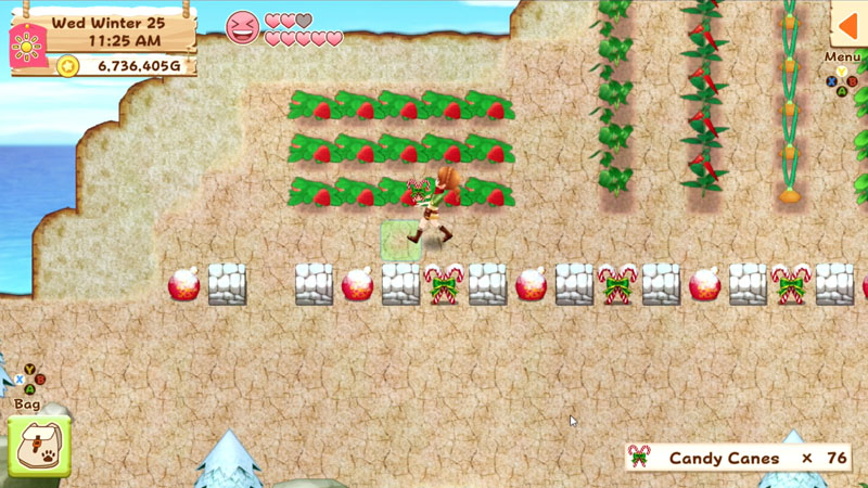 Harvest Moon: Light of Hope - Screenshot 2