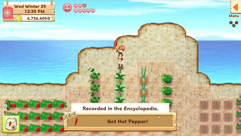 Harvest Moon: Light of Hope - Screenshot 3