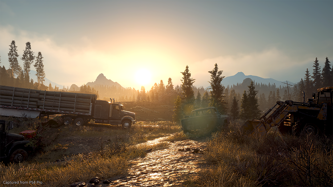 Days Gone - Special Edition - Screenshot 25