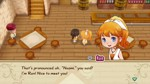 Story of Seasons: Friends of Mineral Town - Screenshot 1
