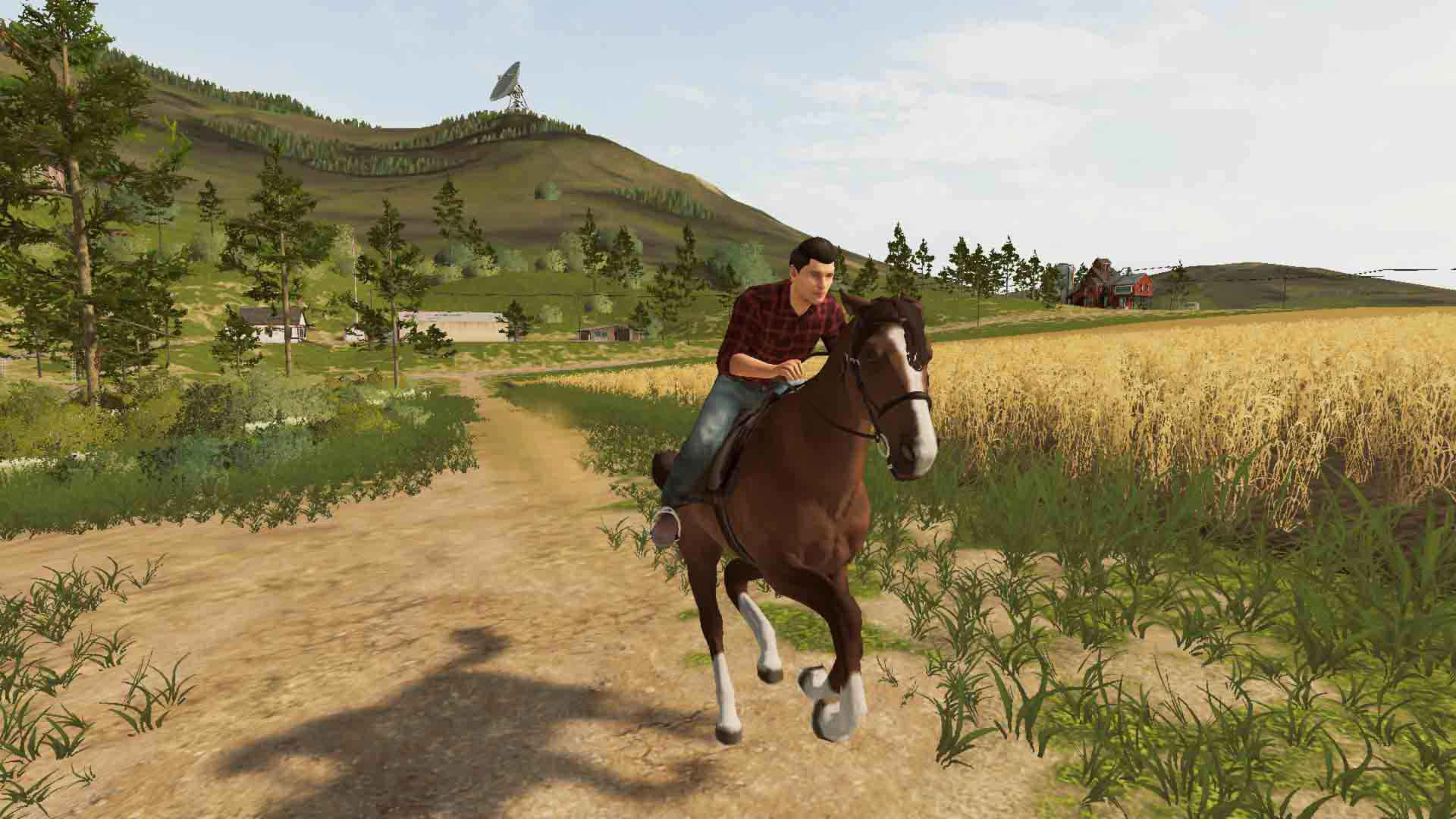 Farming Simulator 20 - Screenshot 4