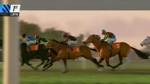 Phar Lap Horse Racing Challenge - Screenshot 4
