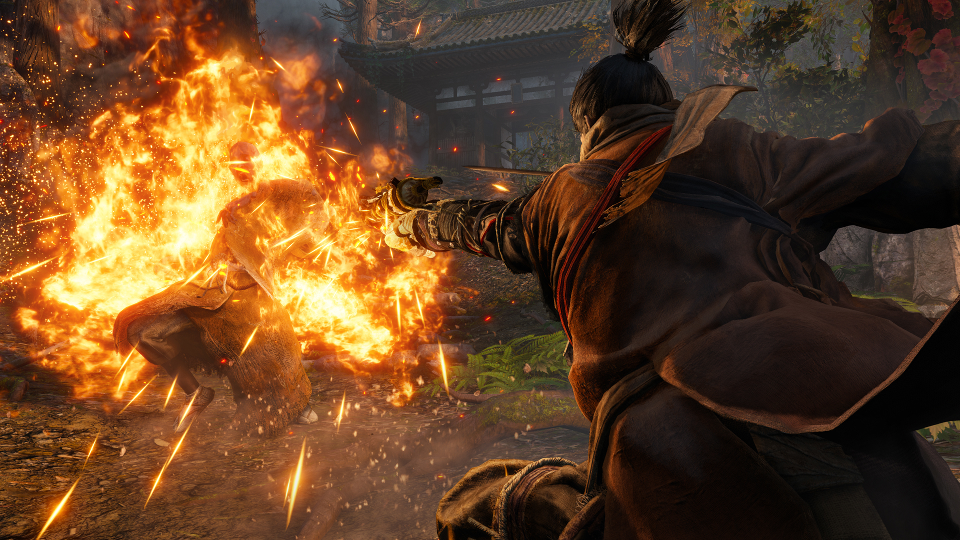 Sekiro: Shadows Die Twice - Screenshot 12