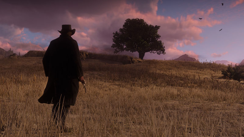 Red Dead Redemption 2 - Screenshot 25